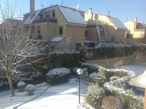 Mi jardín nevado